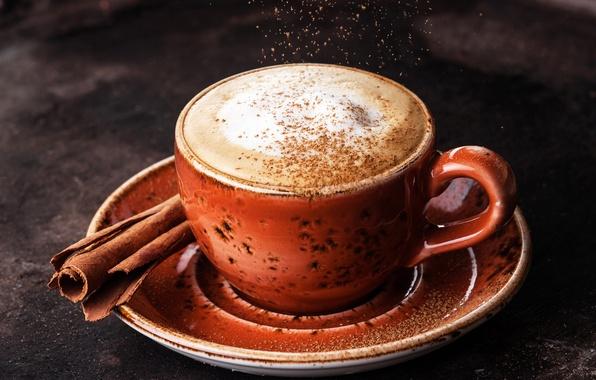 Picture coffee, Cup, cinnamon, foam, Coffee, Drinks, Cinnamon
