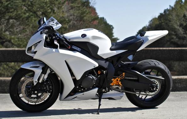 Picture white, the sky, trees, motorcycle, white, honda, Honda, cbr1000rr