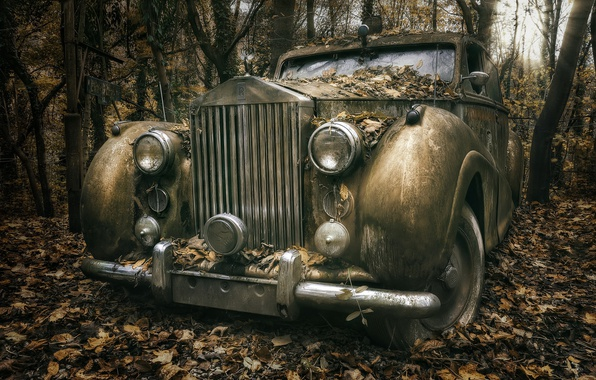 Picture machine, forest, Rolls Royce