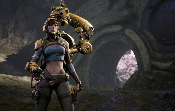 Picture Microsoft, girl, game, woman, caster, oppai, PlayStation 4, PS4, Epic Games, Paragon, PC, Gadget, ranged