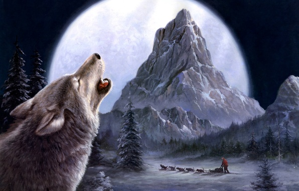 Picture winter, wolves, painting, Tok Hwang
