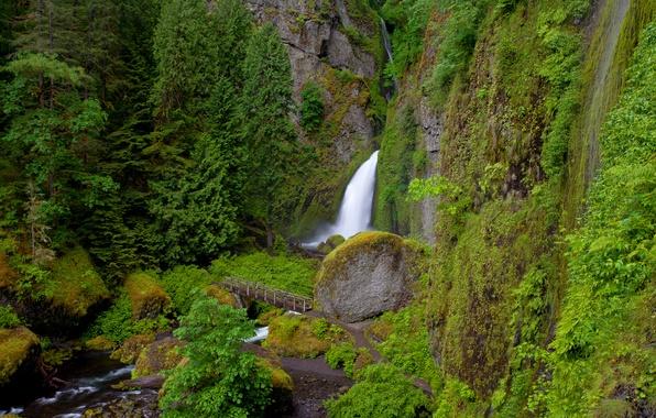 Picture bridge, river, rocks, vegetation, waterfall, Oregon, Wahclella Falls