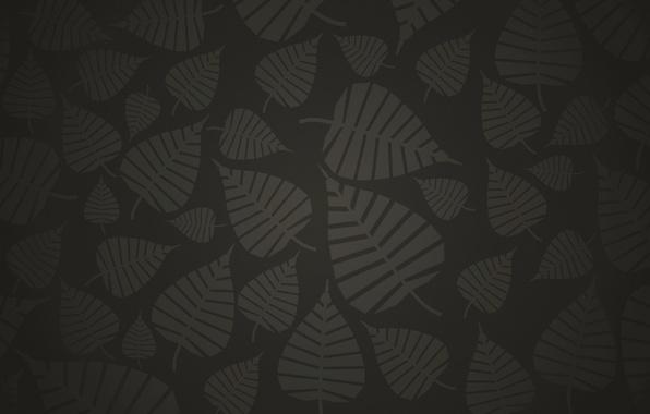 Picture grey, background, black, Leaves, dark