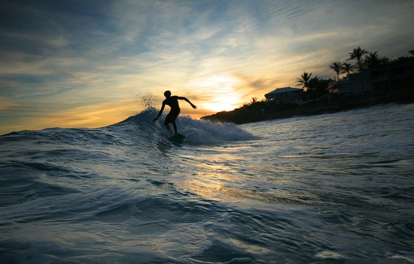 Picture Water, Wave, Surfing, Male