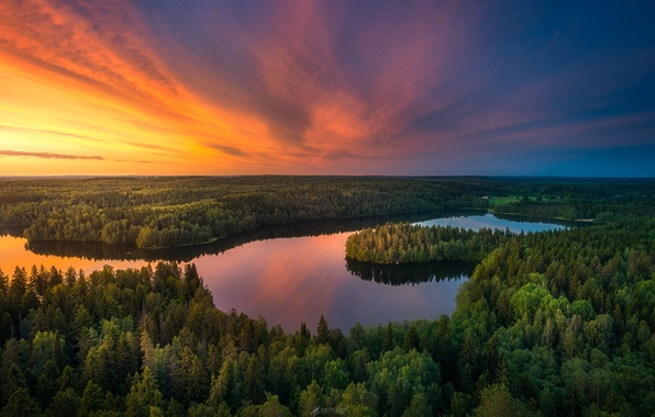 Picture forest, the sky, sunset, lake, river