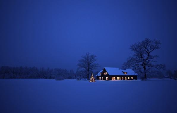Picture winter, snow, trees, landscape, night, nature, house, Christmas, Christmas, New Year