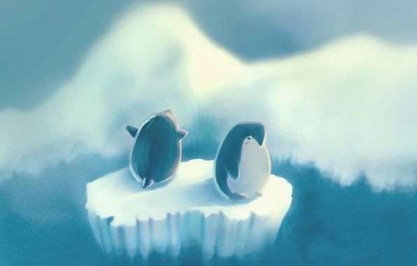 Picture figure, penguins, penguin, floe, island, vincent, author