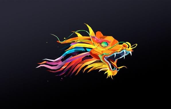 Picture dragon, minimalism, head, polygons
