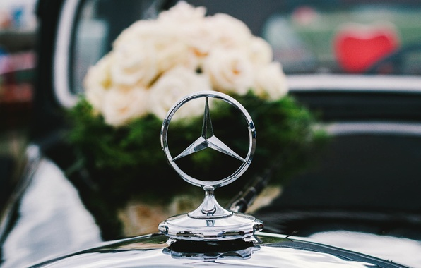 Picture icon, roses, bouquet, Mercedes, white, wedding