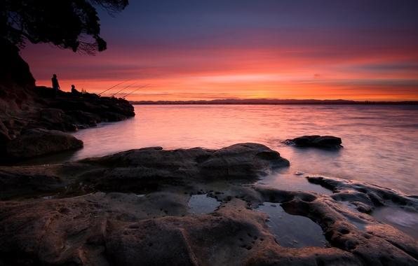 Picture Coyle Park, New Zealand, Point Chevalier, Auckland