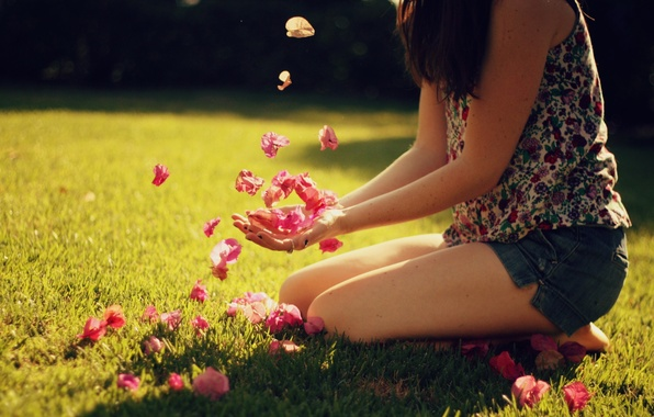 Picture summer, girl, the sun, rays, light, background, mood, Wallpaper, pictures, petals, day, wallpapers