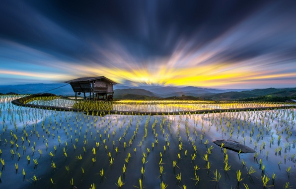 Picture field, the sky, water, light, mountains, sprouts, hills, house