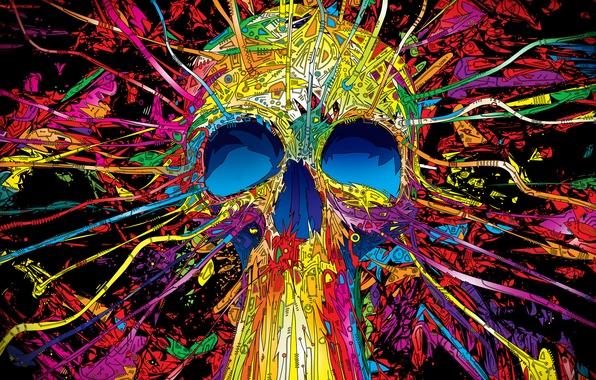 Picture color, line, skull, vector, geometry, Matei Apostolescu