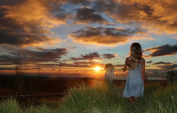 Picture summer, girl, sunset, Summer sunset
