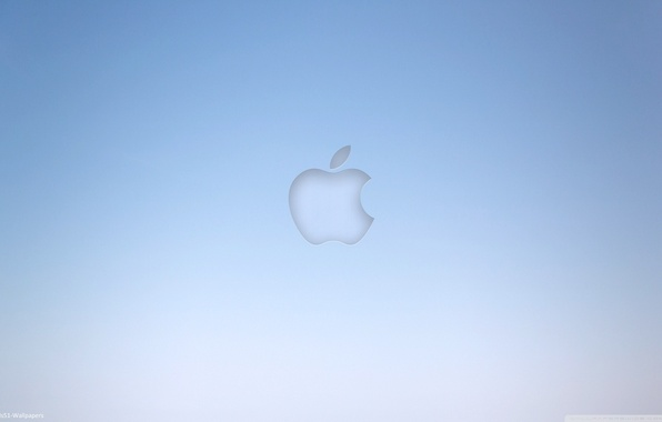 Picture grey, background, blue, apple, Apple, minimalism, computers