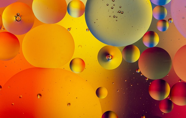 Picture water, bubbles, color, oil, liquid, ball, the air, the volume