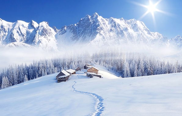 Picture winter, forest, the sky, the sun, snow, trees, mountains, fog, houses, path