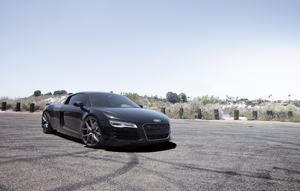 Picture the sky, trees, black, Audi, audi, black, front view