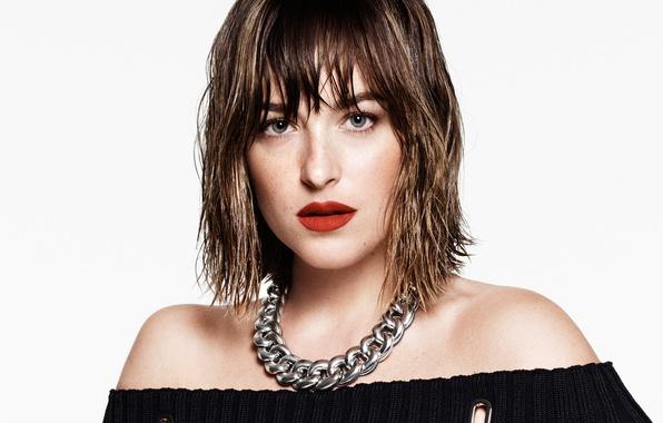 Picture look, close-up, model, portrait, makeup, dress, actress, brunette, hairstyle, photographer, white background, It, Dakota Johnson, …
