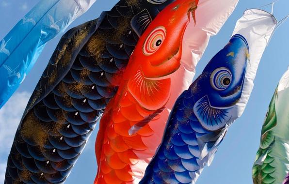 Picture holiday, paint, Japan, lanterns, carp