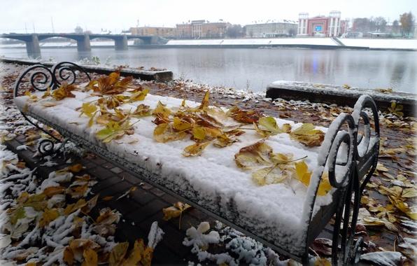 Picture autumn, leaves, landscape, bridge, October, Volga, chestnuts, Tver