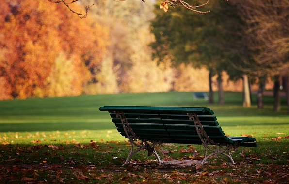 Picture autumn, leaves, bench, nature, Park, mood, Wallpaper, day, shop, the sun, Wallpapers