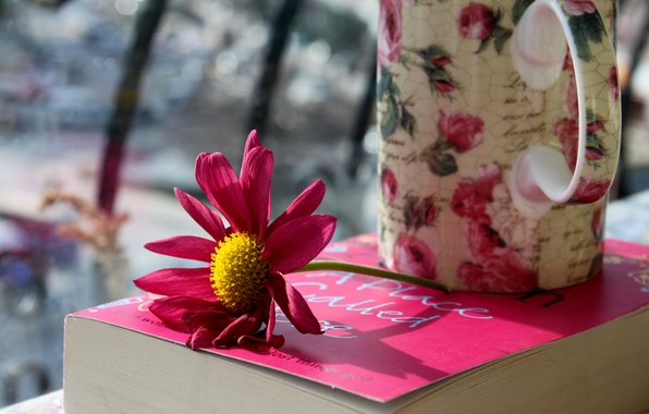 Picture flower, photo, petals, mug, Cup, book, pink
