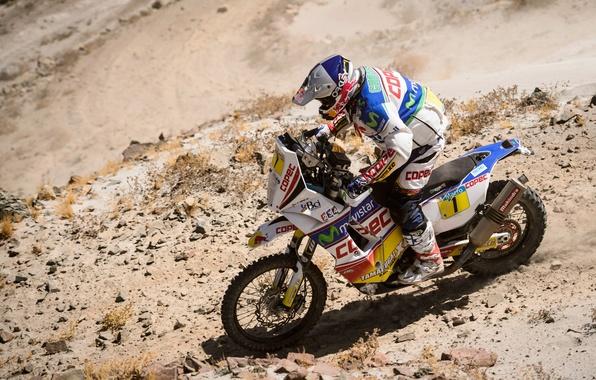 Picture Motorcycle, Racer, Moto, Red Bull, Rally, Dakar, Dakar