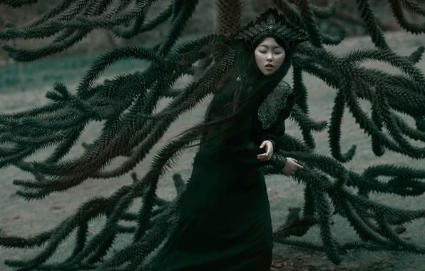 Picture girl, branches, fantasy, art, Sadness, Agnieszka Lorek, Lilian Liu