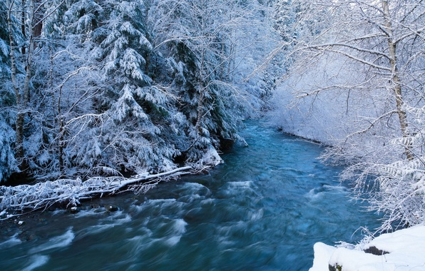 Wallpaper Winter Forest Snow River Stream Images For
