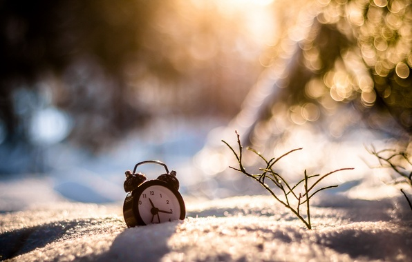 Picture winter, grass, snow, watch, alarm clock, bokeh