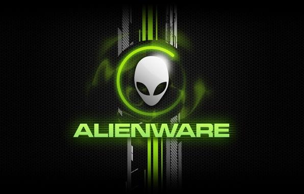 Picture the inscription, texture, head, brand, alienware