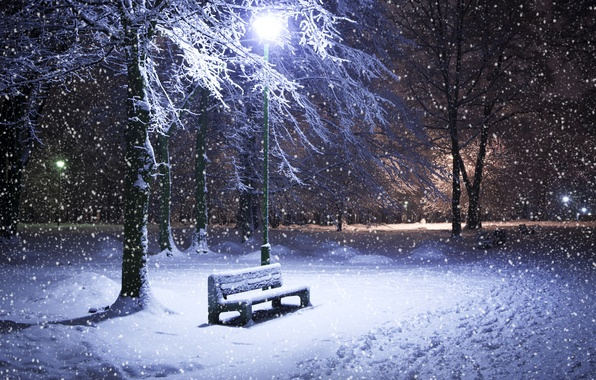 Picture winter, snow, trees, night, Park, lantern, shop