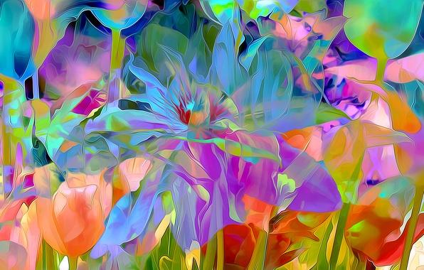 Picture flowers, rendering, petals, garden, meadow
