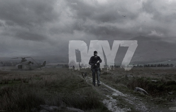 Picture road, field, the sky, people, dog, zombies, helicopter, grey, zombie, day z, dayz, heli crash, ...
