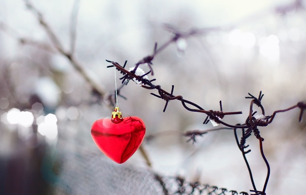 Picture background, mesh, holiday, widescreen, Wallpaper, the fence, blur, gate, wallpaper, form, red, holidays, red, heart, …