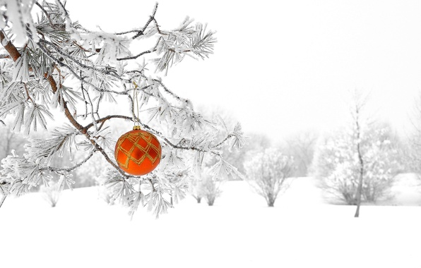 Picture winter, forest, snow, nature, tree, new year, Christmas, ball, decoration