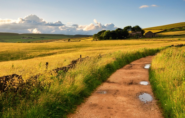Picture road, the sky, grass, clouds, nature, the wind, field, England, home, puddles, Britain
