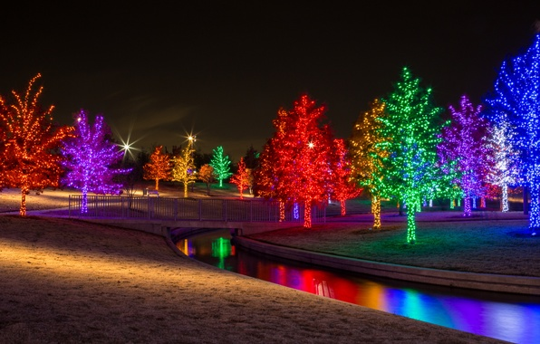 Picture trees, night, lights, Park, river, stream, garland