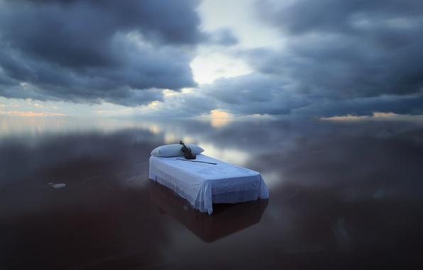 Picture sea, violin, bed