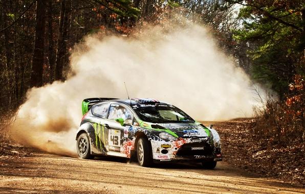 Picture Stones, Drift, 2012, Dirt, rally, WRC, Showdown, Ford Fiesta