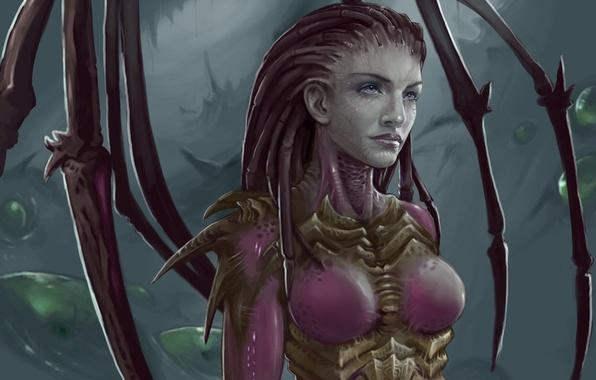 Picture zerg, StarCraft, sarah kerrigan
