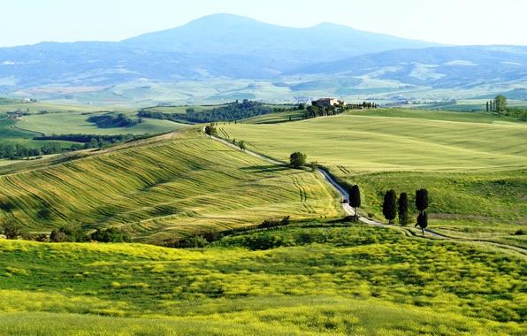 Picture Italy, Italy, Tuscany, Toscana, Pienza, Pienza, Terrapille
