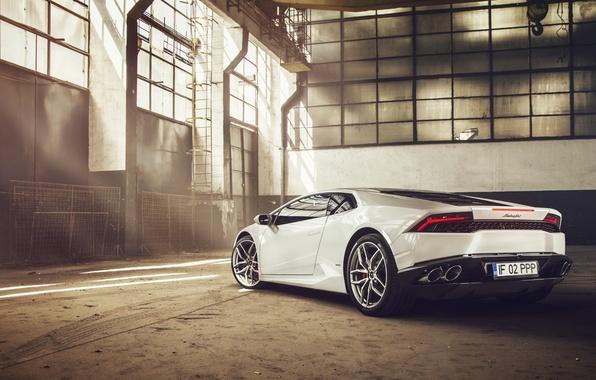 Picture Lamborghini, White, Supercar, 2014, Rear, Huracan, LP610-4