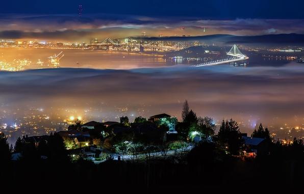 Picture night, bridge, the city, lights, fog, CA, USA, Bay San fracisco, Berkeley