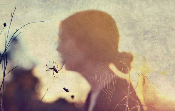 Picture girl, style, web, spider