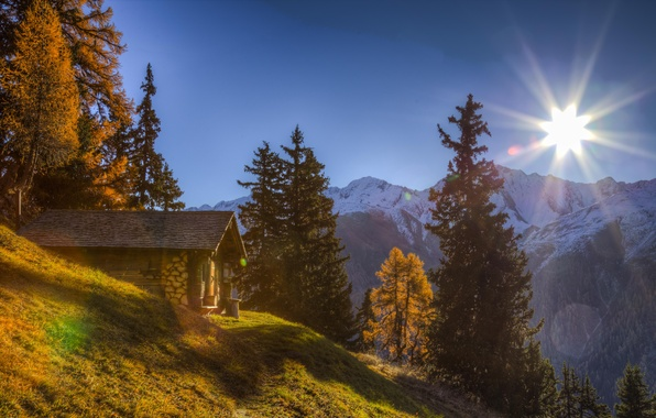 Picture trees, mountains, Switzerland, Alps, house, Switzerland, Alps