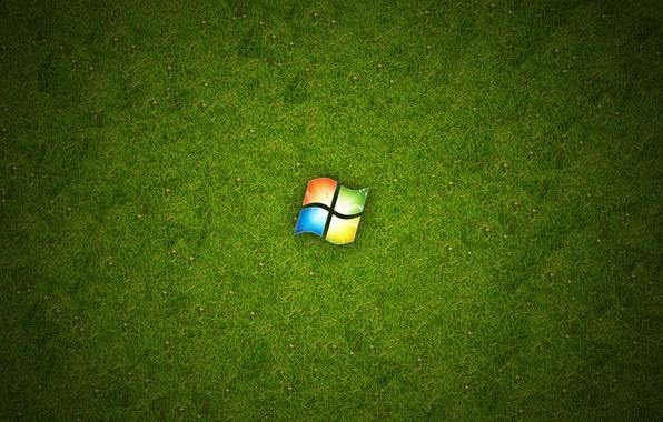 Picture grass, green, Windows