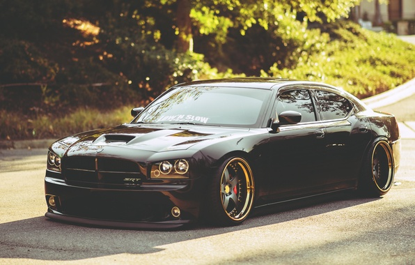Picture Dodge, dodge, charger, the charger