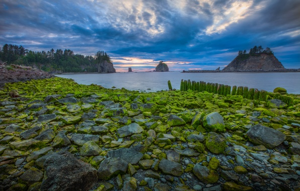 Picture sea, the sky, clouds, trees, sunset, nature, rock, stones, island, moss, USA, national Park